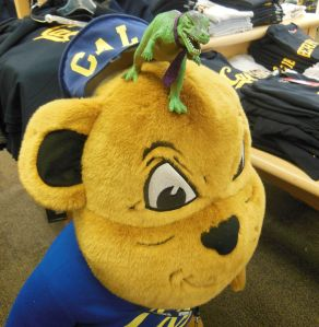 T-Jag vs Oski the Bear at the Cal student store